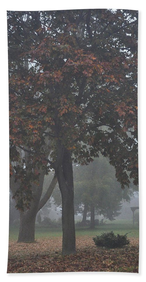 Fall Bath Sheet featuring the photograph Peaceful Morning Mist by Tim Nyberg
