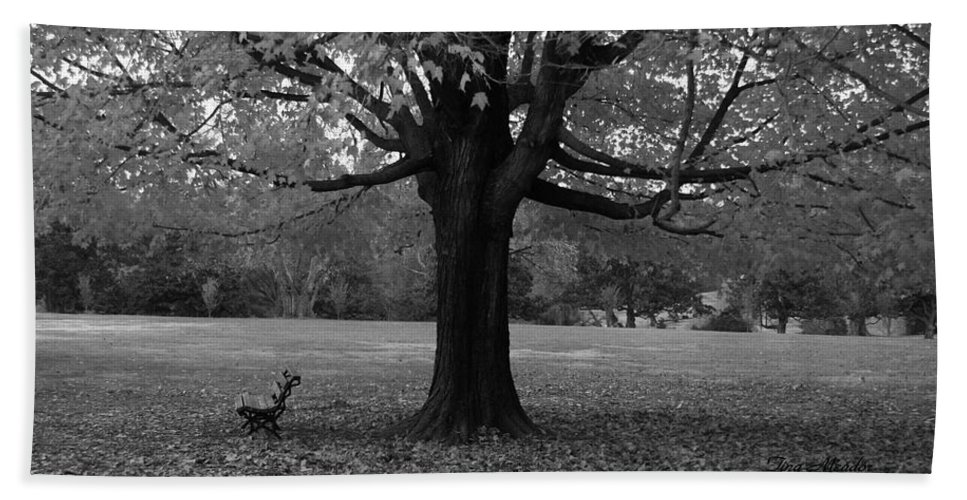 Maymont Hand Towel featuring the photograph Peaceful Park by Tina Meador