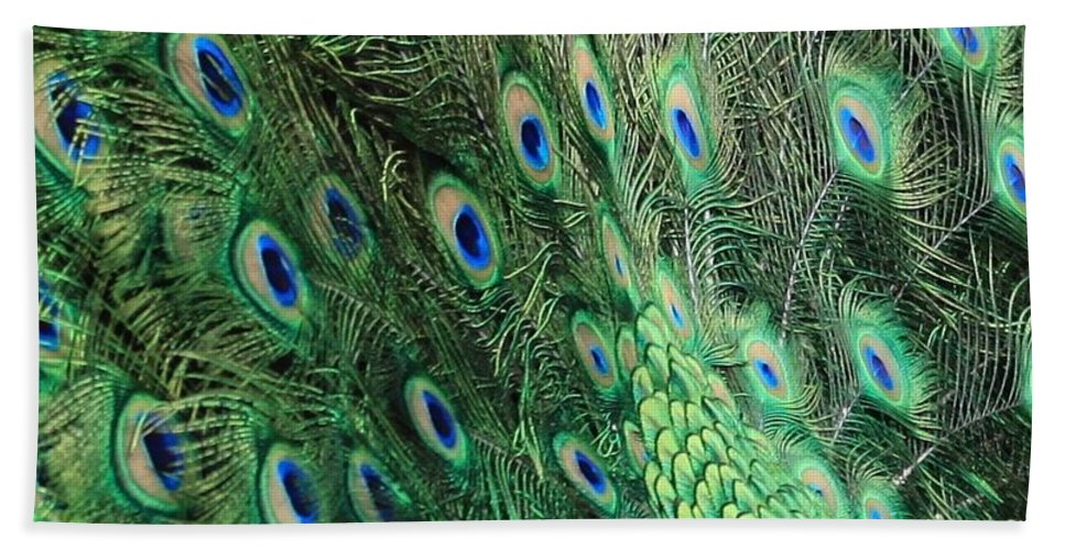 Peacock Feather Pattern Hand Towel featuring the photograph Peacock Feather Pattern by Rose Webber Hawke