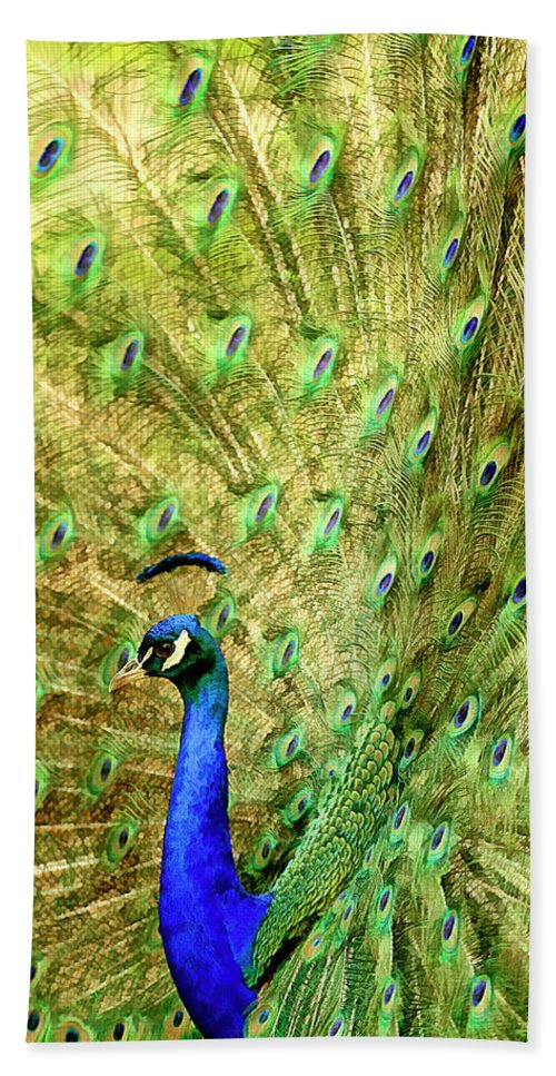 Current Bath Sheet featuring the mixed media Peacock Prancing by Geraldine Scull