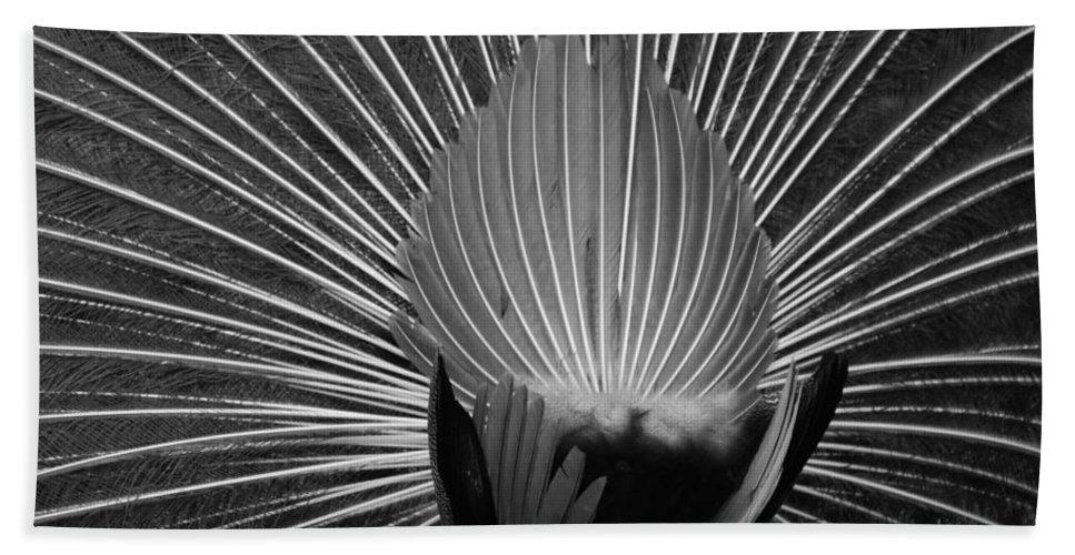 Macro Bath Towel featuring the photograph Peacocks Ass Original by Rob Hans