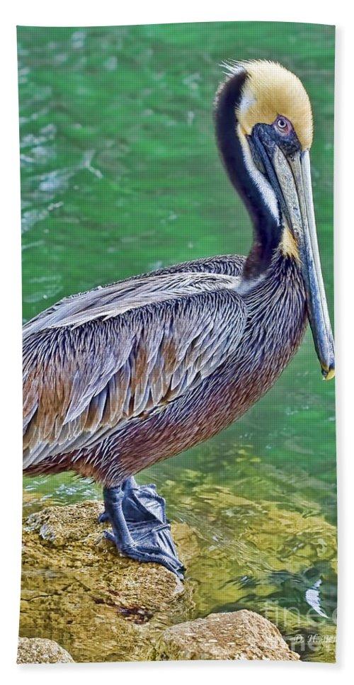 Pelican Hand Towel featuring the photograph Pelican By The Pier by Deborah Benoit