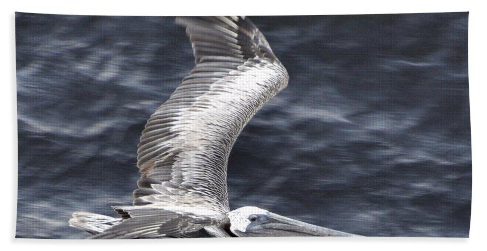 Pelican Hand Towel featuring the photograph Pelican Flight by Glenn Gordon