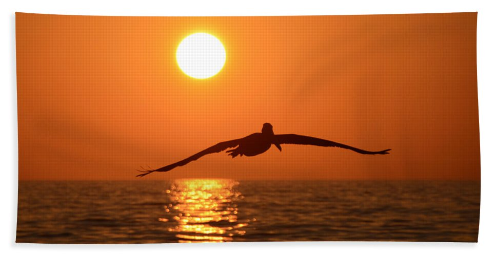 Fine At Photography Bath Sheet featuring the photograph Pelican Sunset by David Lee Thompson