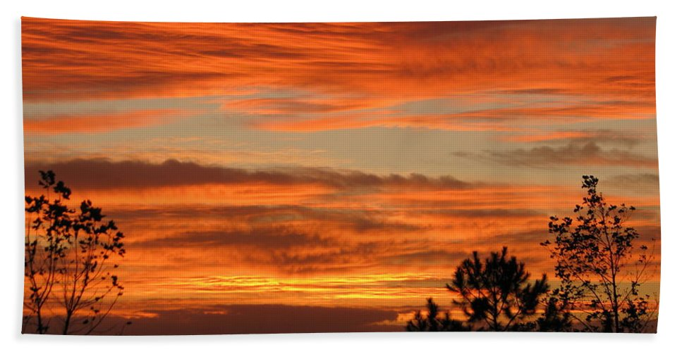 Art For The Wall...patzer Photography Bath Towel featuring the photograph Perfection by Greg Patzer