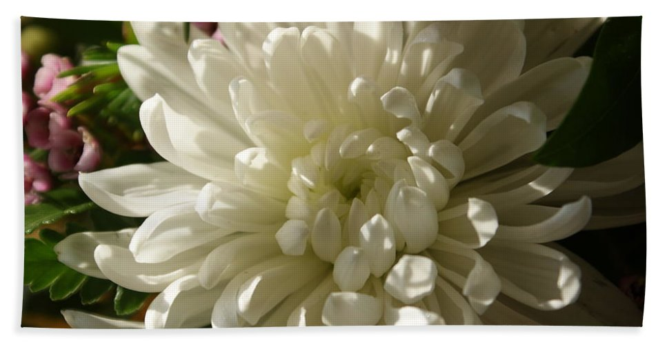 Flower Bath Sheet featuring the photograph Petals Profusion by Cricket Hackmann