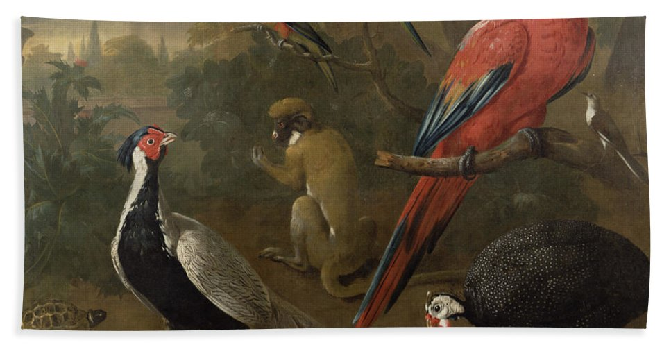 Pheasant Bath Sheet featuring the painting Pheasant Macaw Monkey Parrots And Tortoise by Charles Collins