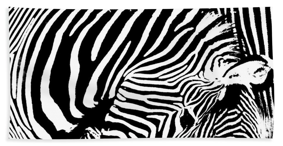 Zebra Hand Towel featuring the photograph Piano by Edgar Laureano