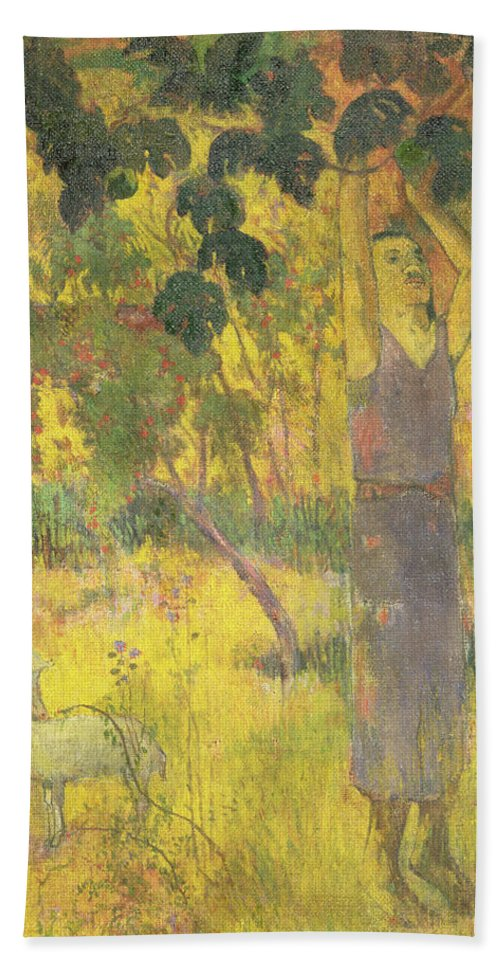 Man Picking Fruit From A Tree Hand Towel featuring the painting Picking Fruit From A Tree by Paul Gauguin