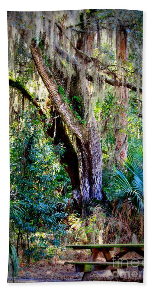 Picnic Table Bath Sheet featuring the photograph Picnic Time In Florida by Carol Groenen