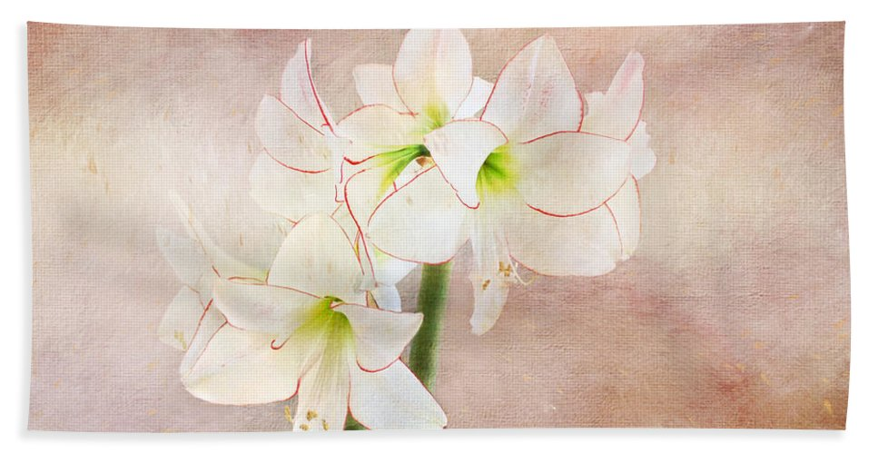 Flower Hand Towel featuring the digital art Picotee Amaryllis by Terry Davis