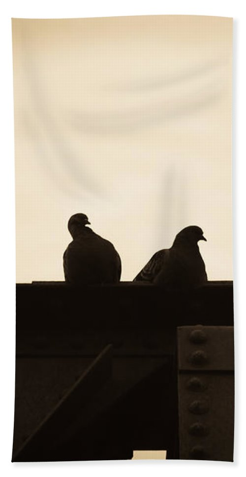 Silhouettes Hand Towel featuring the photograph Pigeon And Steel by Bob Orsillo