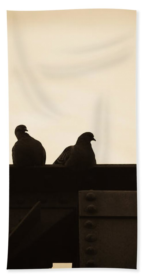 Silhouettes Bath Sheet featuring the photograph Pigeon And Steel by Bob Orsillo