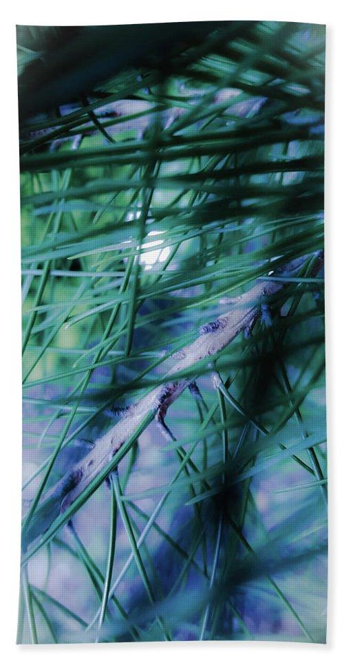 Garden Bath Sheet featuring the photograph Pine by Milena Boteva