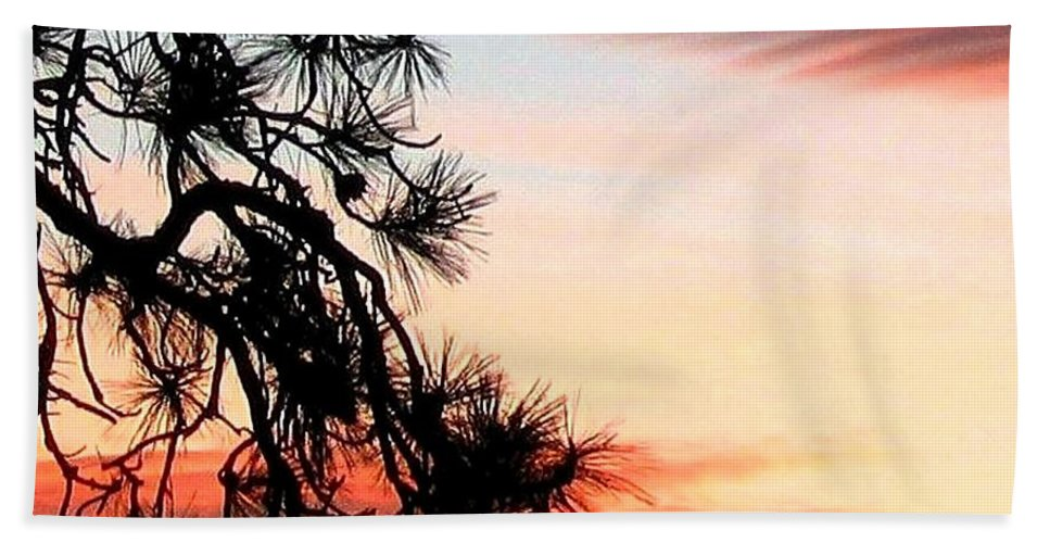 Sunset Bath Towel featuring the photograph Pine Tree Silhouette by Will Borden
