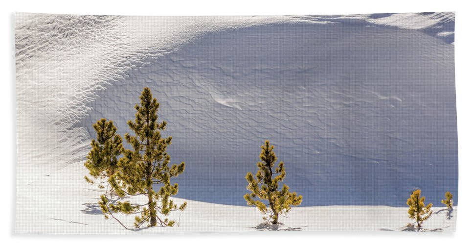 Snow Bath Sheet featuring the photograph Pines In The Snow Drifts by Stephen Johnson