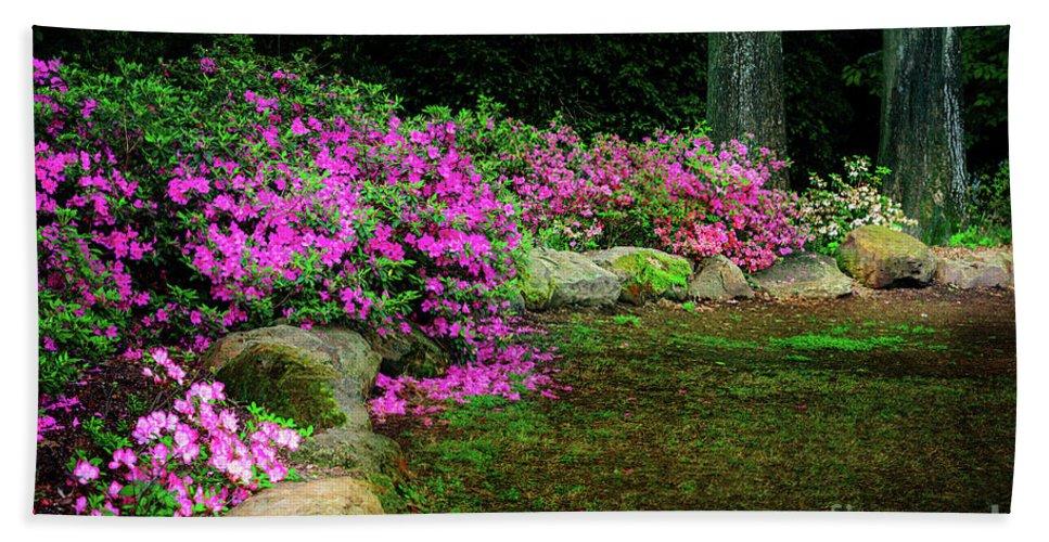 Tamyra Bath Sheet featuring the photograph Pink Azaleas At The Azalea Festival by Tamyra Ayles