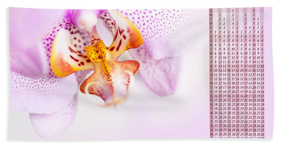 Orchid Bath Sheet featuring the photograph Pink Blotchy Orchid Calendar 2016 by Arletta Cwalina