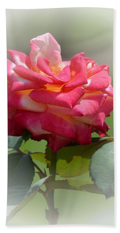 Pink Chiffon Ruffles Bath Sheet featuring the photograph Pink Chiffon Ruffles by Maria Urso