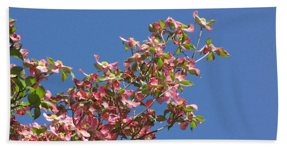 Tree Bath Sheet featuring the photograph Pink Dogwood by Sarah Houser