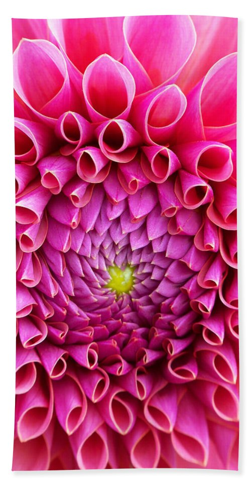 Flower Hand Towel featuring the photograph Pink Flower Close Up by Anthony Jones
