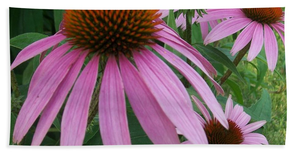 Flowers Bath Towel featuring the photograph Pink In The Garden by Anita Burgermeister