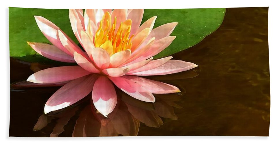 Pink Lily Reflection Bath Sheet featuring the photograph Pink Lily Reflection 4 by Lisa Renee Ludlum