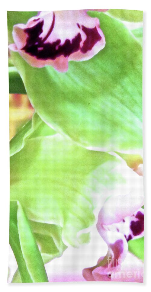 Flower Bath Sheet featuring the photograph Pink Orchid With Green 1 by Ken Lerner