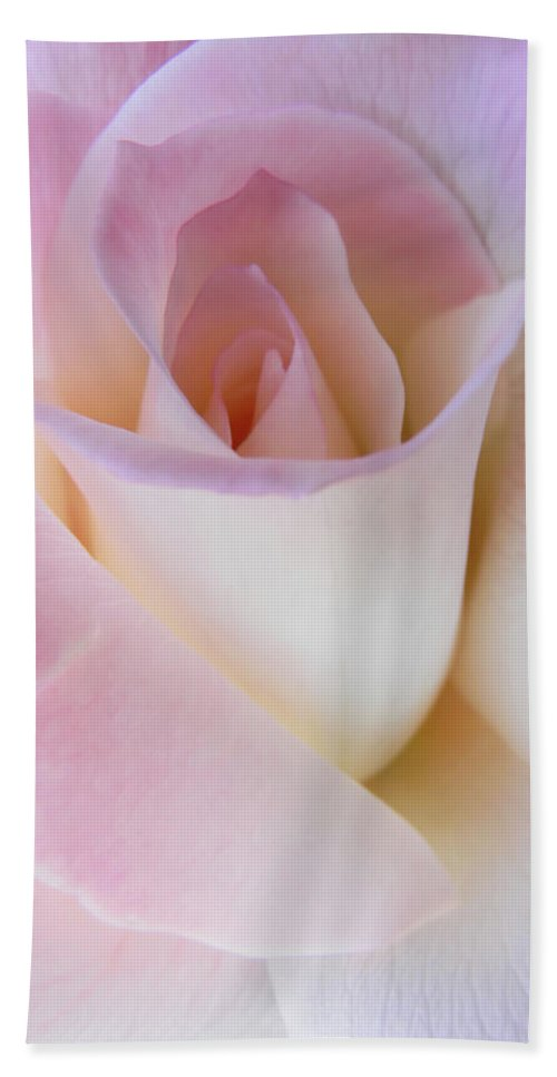 Rose Hand Towel featuring the photograph Pink Rose Beginnings by Jennie Marie Schell