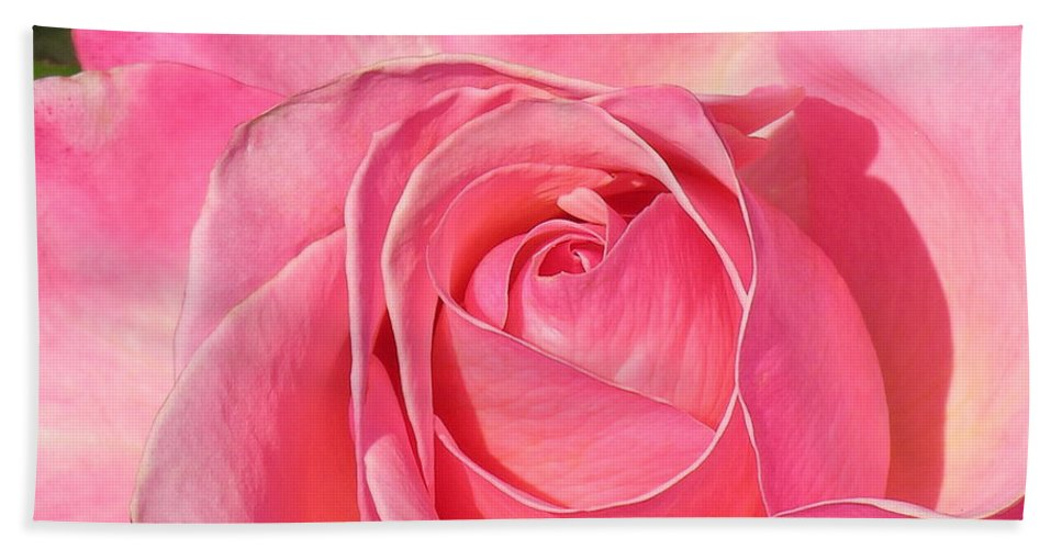 Canvas Print Hand Towel featuring the photograph Pink Rose by Diane Greco-Lesser