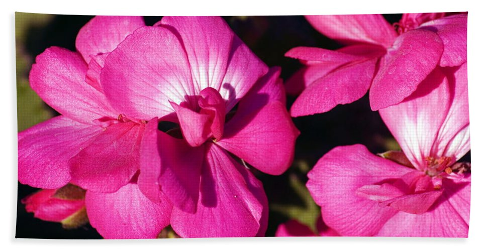 Clay Bath Towel featuring the photograph Pink Spring Florals by Clayton Bruster