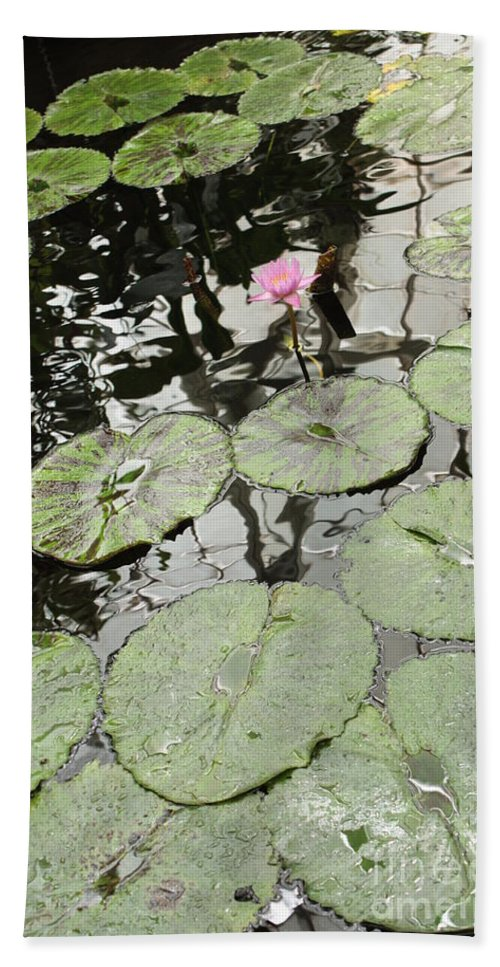 Ond Bath Towel featuring the photograph Pink Water Lily by Carol Groenen