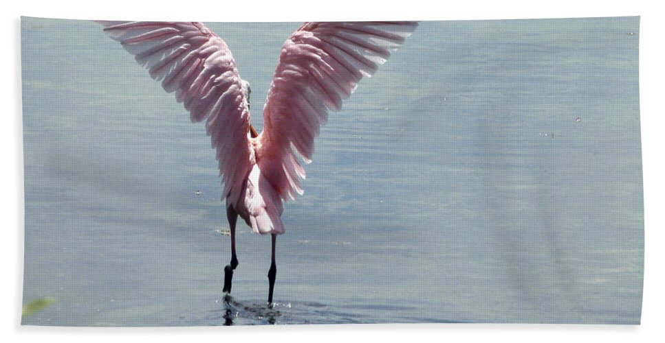 Roseate Spoonbill Hand Towel featuring the photograph Pink Wings by Kimberly Mohlenhoff