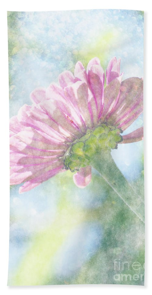 Zinnia Hand Towel featuring the photograph Pink Zinnia On Bokeh Background by Jim And Emily Bush