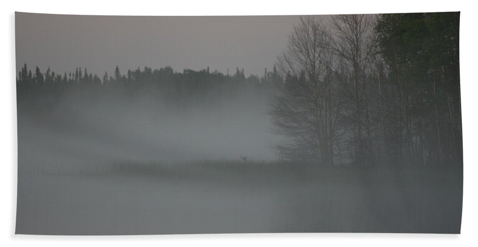 Lake Water Forest Camp Mist Trees Saskatchewan Hand Towel featuring the photograph Piprell Lake 4 Am Mist by Andrea Lawrence