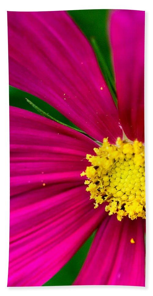 Plink Bath Towel featuring the photograph Plink Flower Closeup by Michael Bessler