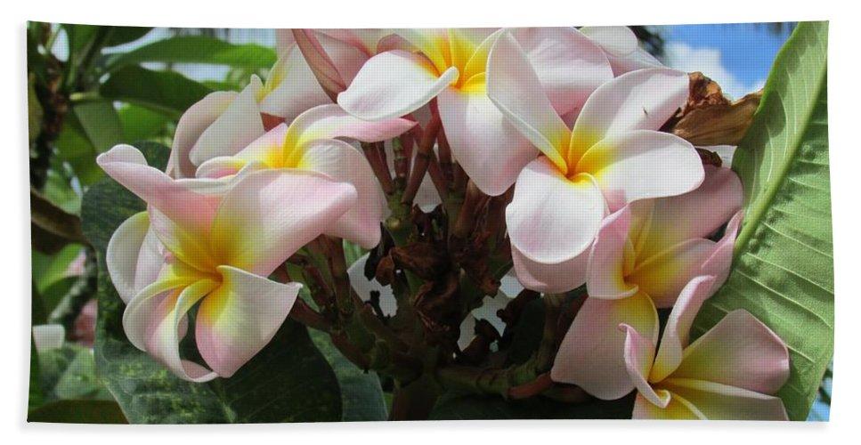 Hawaii Hawaiian Plumeria Flower Landscape Nature Hand Towel featuring the photograph Plumeria In Pink 3 by Huery Talbert