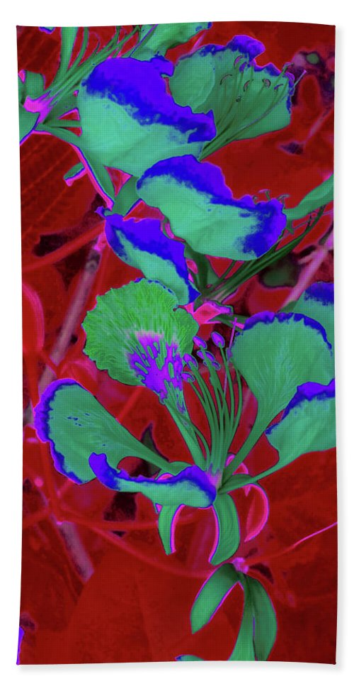 Trees Bath Sheet featuring the photograph Poinciana Flower 8 by Gary Bartoloni