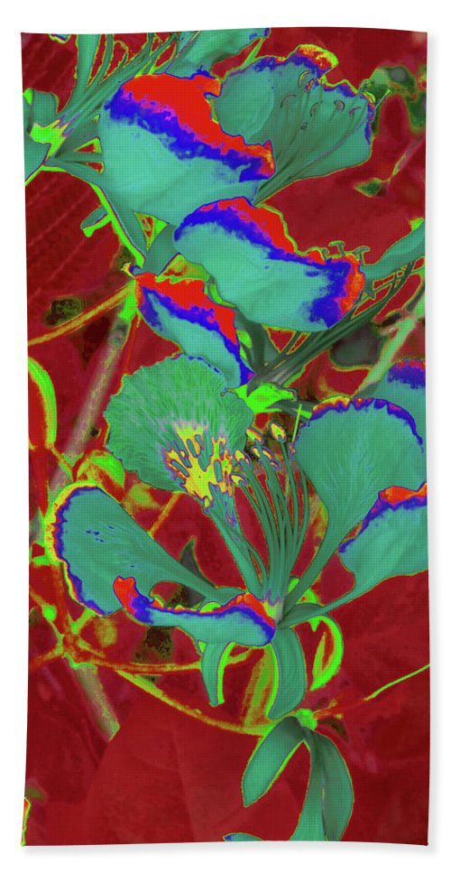 Trees Bath Sheet featuring the photograph Poinciana Flower 9 by Gary Bartoloni