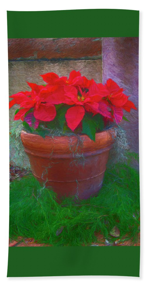 Happy Holidays Bath Sheet featuring the photograph Poinsettia Pot by Jennifer Stackpole