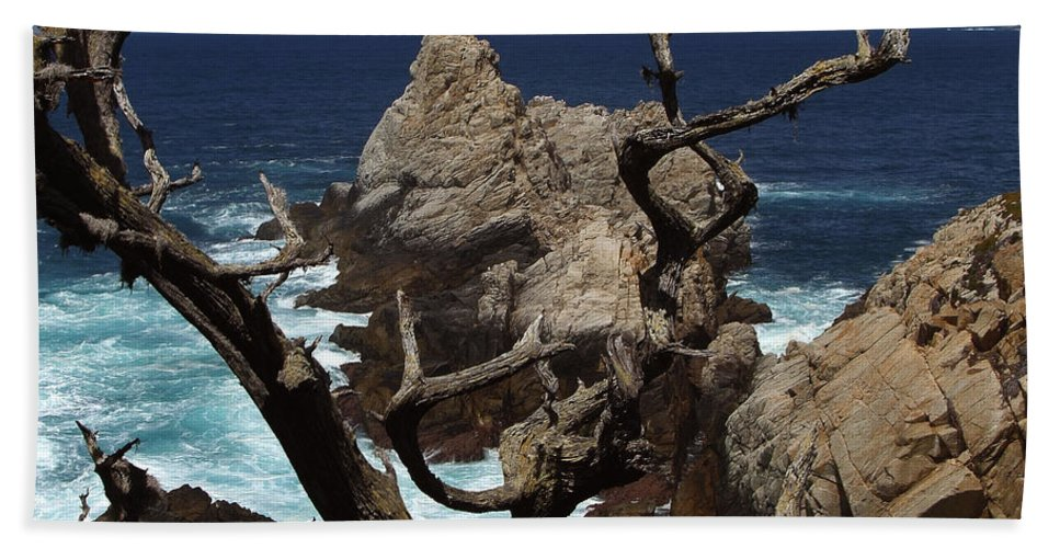 Carmel Bath Towel featuring the photograph Point Lobos Rocks And Branches by Charlene Mitchell