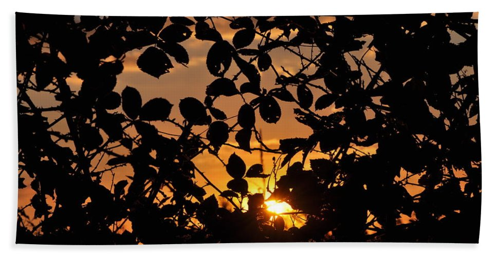 Sunset Hand Towel featuring the photograph Pointed Shadow by Brittany Horton