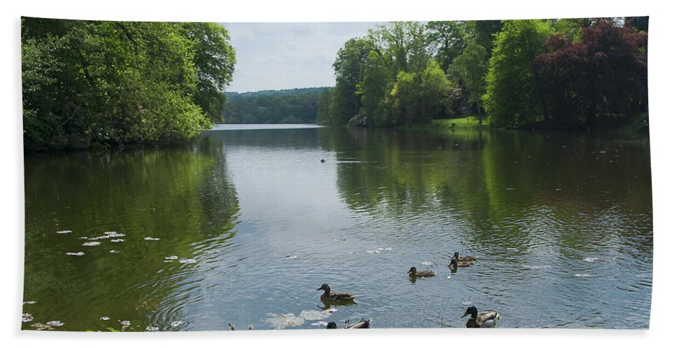 Countryside Bath Sheet featuring the photograph Pond And Ducks by Svetlana Sewell