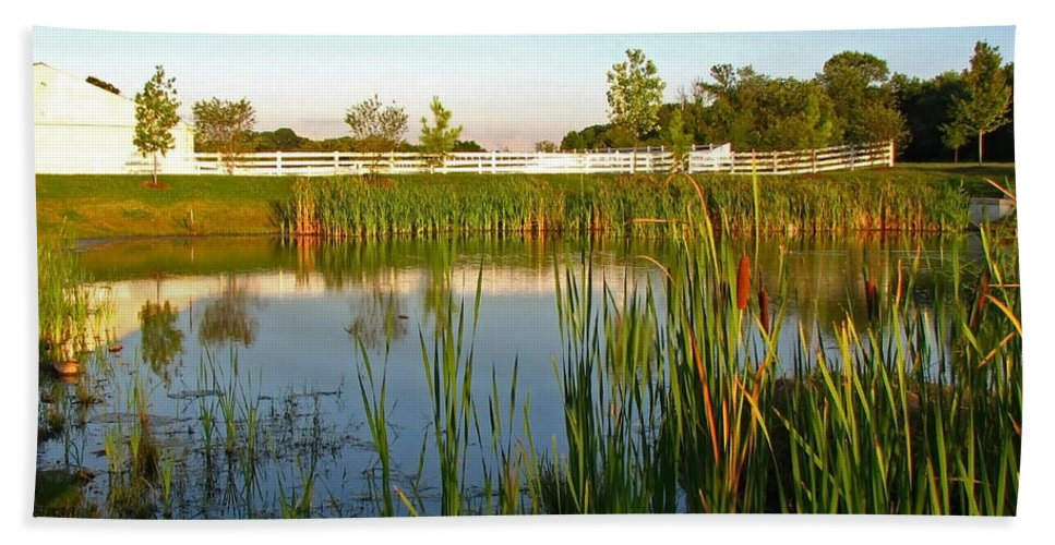 Landscape Bath Sheet featuring the photograph Pond At Sunset by Todd Blanchard