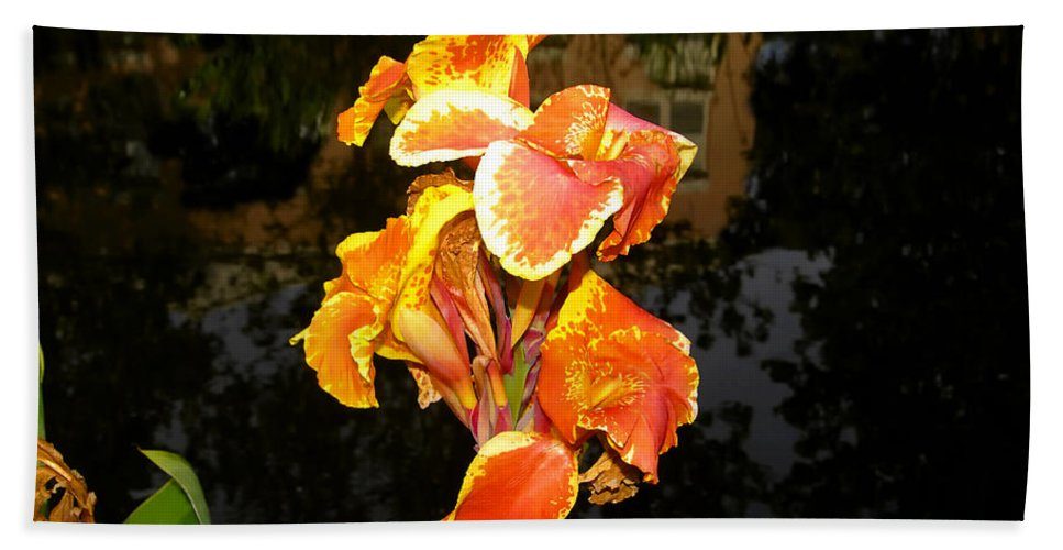Flower Hand Towel featuring the photograph Pond Beauty by David Lee Thompson