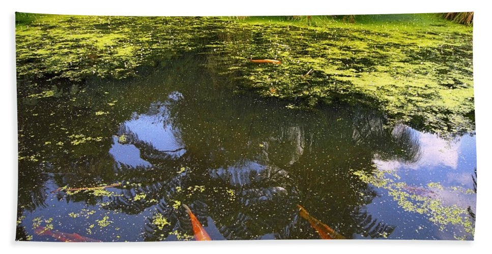 Water Bath Sheet featuring the photograph Pond by Tib Nagi