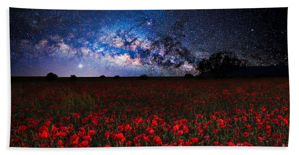 Poppies Bath Sheet featuring the photograph Poppies At Night by Sebastien Coell