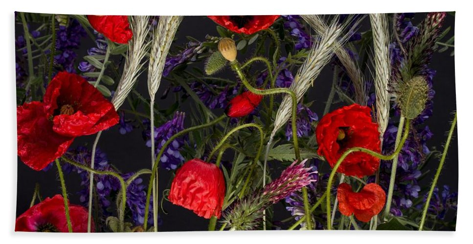 Poppies Poppy Corn Flora Floral Flower Flowers Nature Botanical Roe Ears Corn Purple Red Foliage Hand Towel featuring the painting Poppies In The Corn by Joy of Life Art Gallery