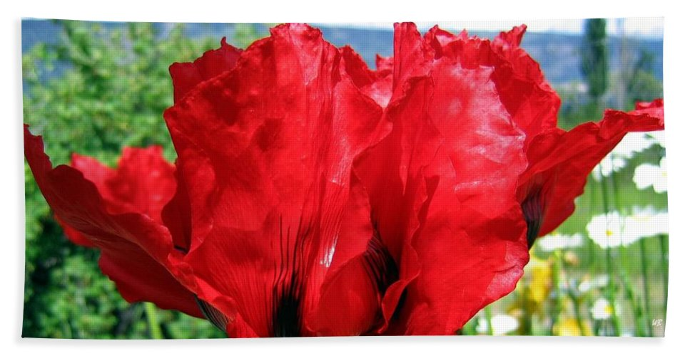 Poppies Hand Towel featuring the photograph Poppies Plus by Will Borden