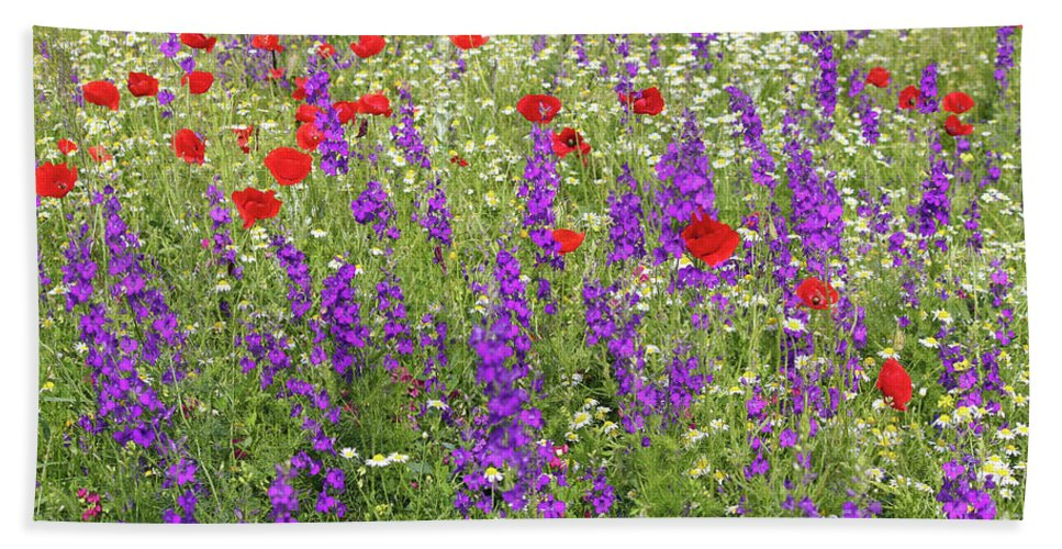 Camomile Hand Towel featuring the photograph Poppy And Wild Flowers Meadow Nature Scene by Goce Risteski